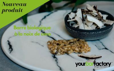 Barre biologique aux morceaux de noix de coco